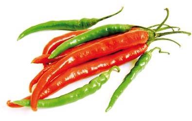 Fire-&-Spice-395x250