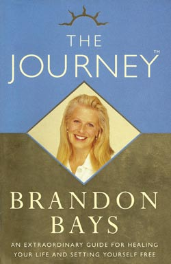 Cover snapshot of the book The journey by Brandon Bays