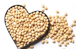 Soya - healthy if not in excess