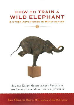 how-to-train-a-wild-elephant-250x354