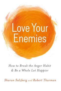 book-love-your-enemies-250