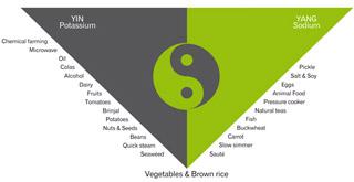 balance-your-diet-320x165