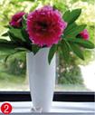 flower-2a
