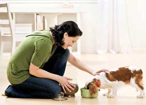 girl feeding a pet