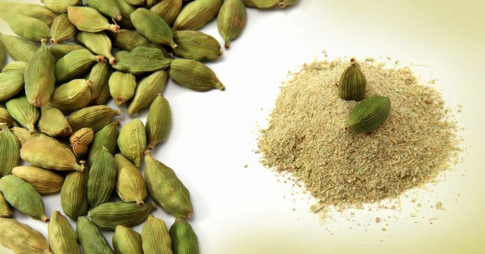 Cardamom the spices