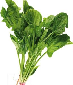 Grean Leafy vegetable