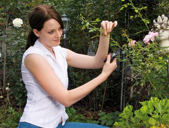 Woman doing gardening