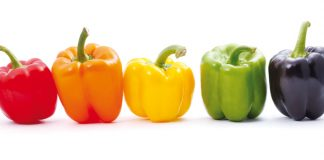 Colourful bell peppers