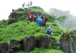 A group trekking in green mountain
