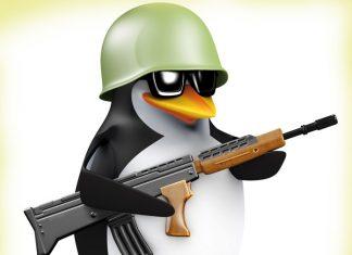 Penguin with a gun