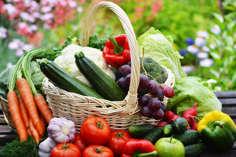 Organic Foods Tumblr