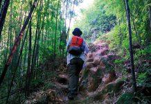Trekker climbing up