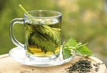 stinging nettle leaves in cup of water