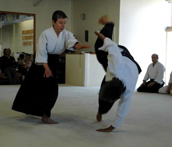 Aikido on the mat