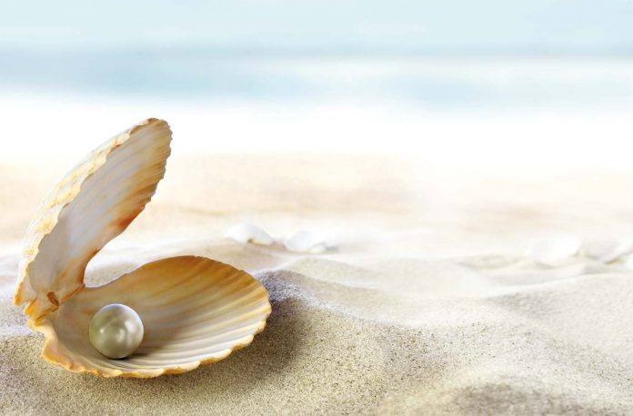 Pearl in a shell on sands