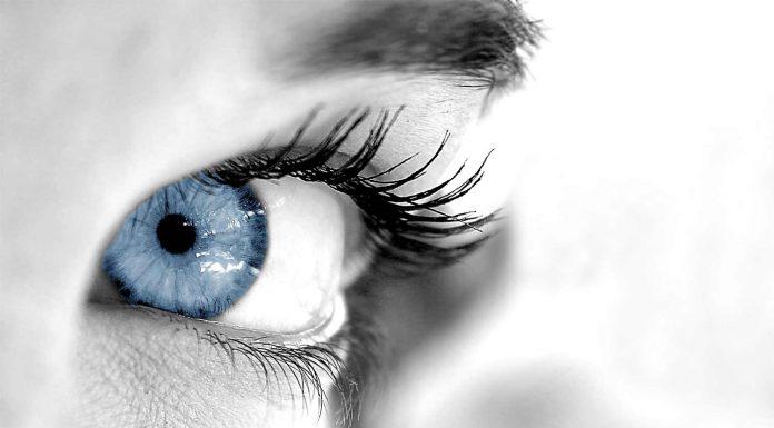 Close-ip ofa human eye / concept of perceptions