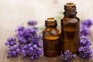 bottles of essential oils with lavender flowers in the background