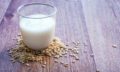 Rice mylk - vegan alternative to dairy milk