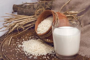 Sesame mylk - vegan alternative to dairy milk