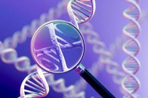 Concept of genetic testing