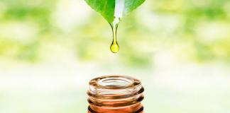 Essential oil from leaf drop falling in bottle