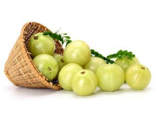 Amla Indian Gooseberry / super foods
