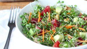 microgreens-salad-n