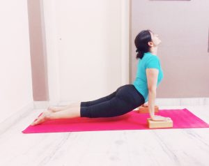 Upward dog with blocks