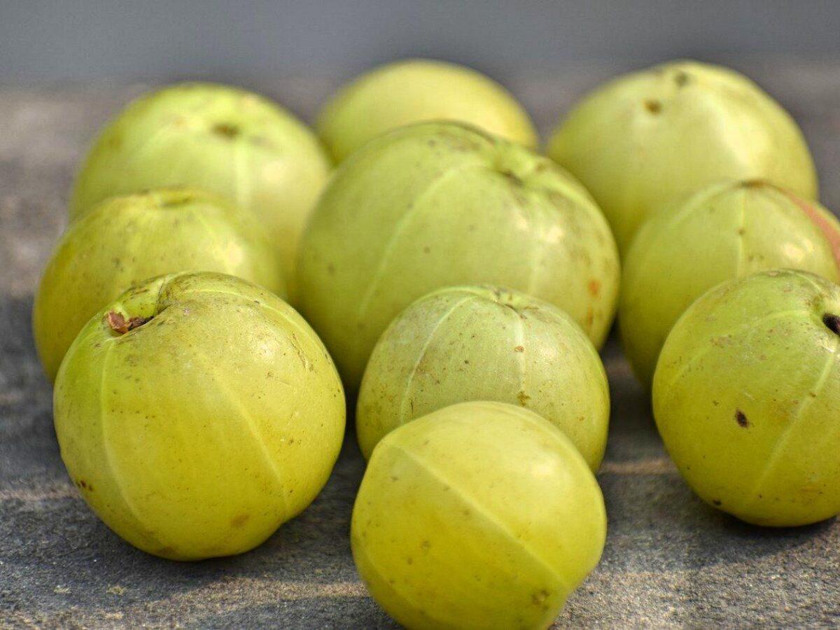 10 Health Benefits Of Amla Indian Gooseberry Complete Wellbeing
